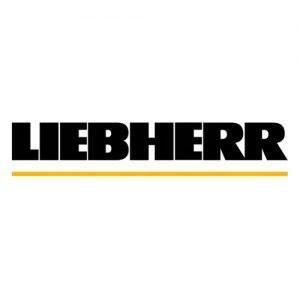 Electromotor, alternator Liebherr
